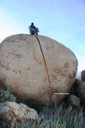 Rock Climbing Photo: Turtle Dome Crack Topo