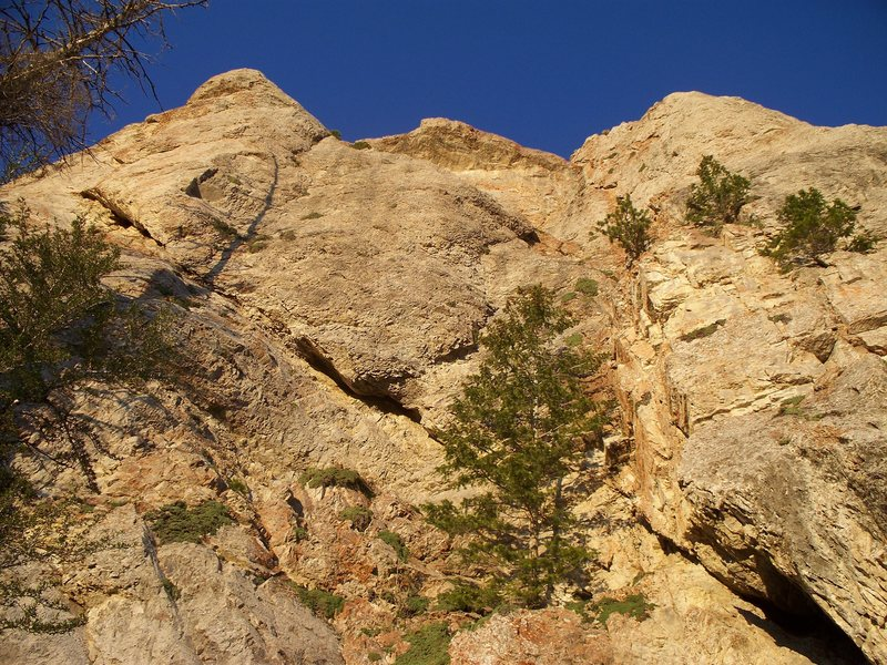 Rock Climbing Photo: Seperation Anxiety climbs to the top right of the ...