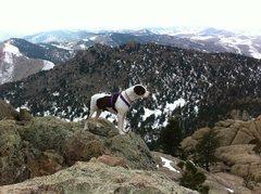 Rock Climbing Photo: Greyrock