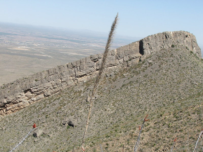 Dihedral Ridge
