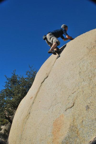 Testarossas are the best crack-climbing shoe
