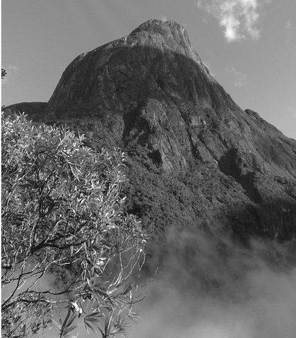 Rock Climbing Photo: IBITIRATI.BASE.SACI