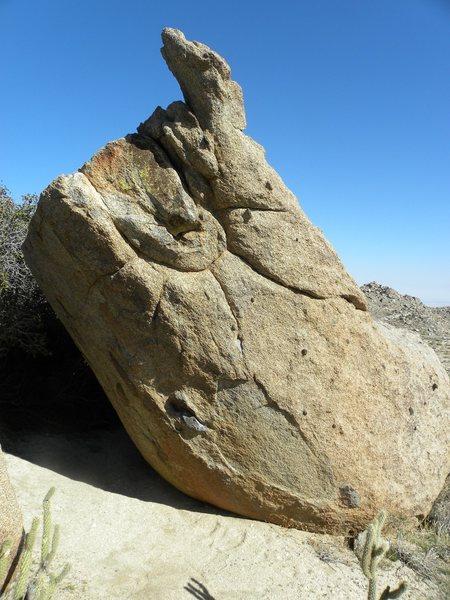 Horn Boulder