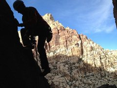 Rock Climbing Photo: Trihardral in First Creek Red Rocks NV 