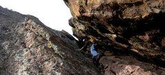 Rock Climbing Photo: Near the top on El Camino Royale. 1/31/12.