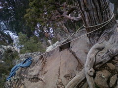 Rock Climbing Photo: TR Anchor #1a
