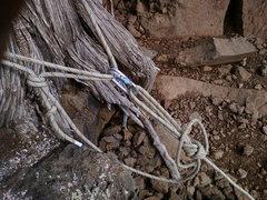 Rock Climbing Photo: TR Anchor #2