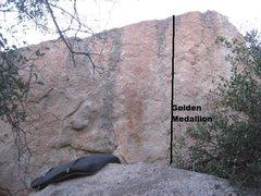 Rock Climbing Photo: golden medallion