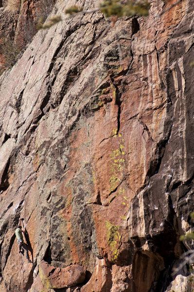 Rock Climbing Photo: JJ working his way through the crux...