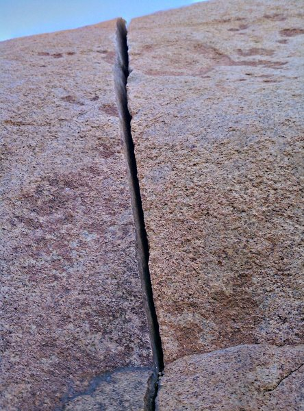 Turtle Dome Crack