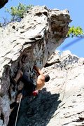 Rock Climbing Photo: Trundlasaurus Wall  Dewey Used To Love It (5.10)  ...