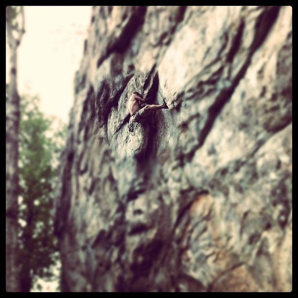 Practice Wall<br> <br> Slimebelly Snakeass Sodhole Skunkpie (5.12a) Mixed<br> <br> Crowders Mountain State Park, North Carolina