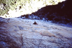 Rock Climbing Photo: West Face of El Cap.  Fast and free (except one mo...