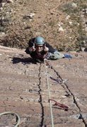 Rock Climbing Photo: Top of Pitch 5 - Birdland, Brass Wall - Red Rocks