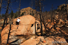 Rock Climbing Photo: Climbing on the Tonsil middle route. Fun problem. ...