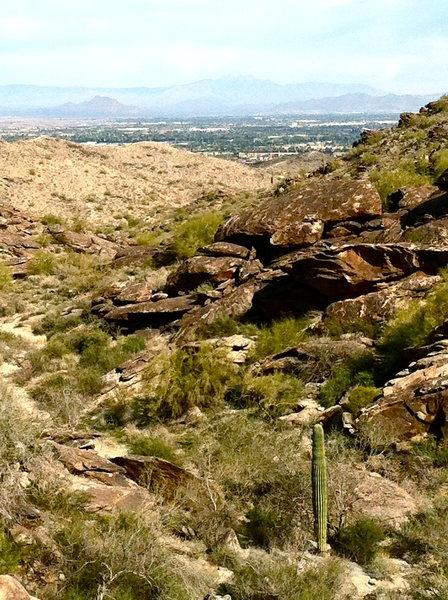 Pima Canyon, South Mountain Arizona