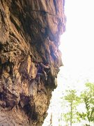 Rock Climbing Photo: Car Wall  Lincoln Smith at the crux  Burn Signals ...
