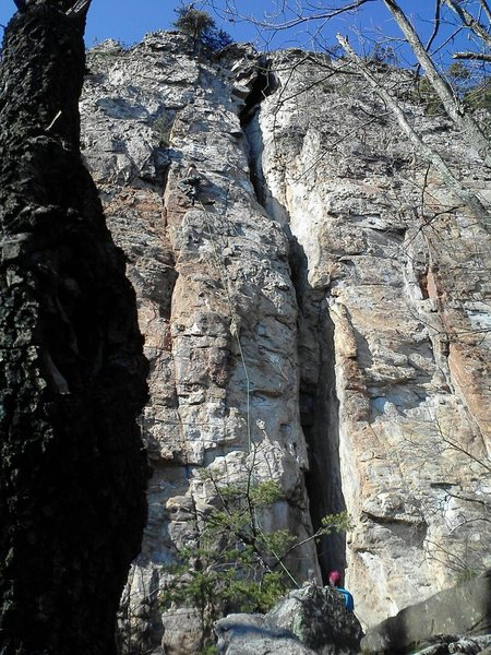 Davids Castle Wall<br> <br> Dave Coleman leading<br> Electra(5.10c) sport<br> <br> Crowders Mountain State Park, North Carolina