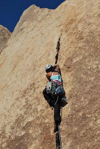 Niru cruising the splitter hands on Desert Queen. <br> <br> Photo by Erica Maharg