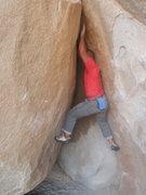 Rock Climbing Photo: Getting established.