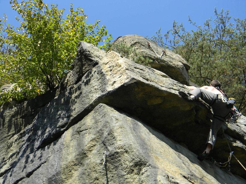 Rock Climbing Photo: Oak