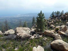 Rock Climbing Photo: The largest boulder in the picture (in the center ...