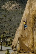 Rock Climbing Photo: Kurt Smith on the FA of Duncecap (5.13b), Joshua T...