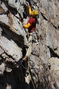 Rock Climbing Photo: Practice Wall  Heady Areteddy(5.9) trad  Crowders ...