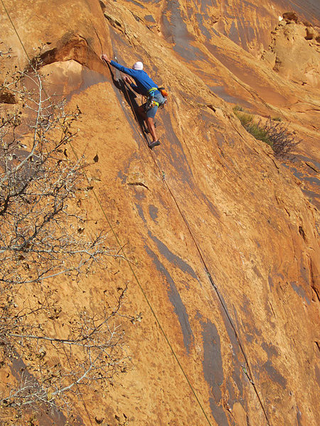 Lynn Sanson nearing the top.