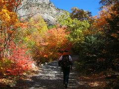 Rock Climbing Photo: Headed to climb on a nice fall day!