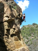 Rock Climbing Photo: Morgan on one of the many new climbs at The Pup Te...