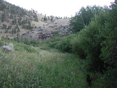 Rock Climbing Photo: the Beginning of the seasonally overgrown hiking t...