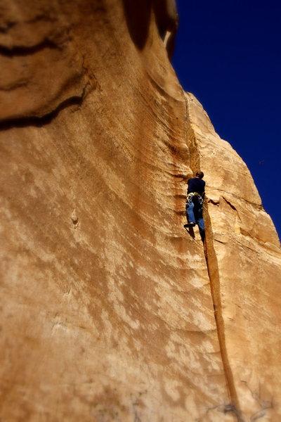 Rock Climbing Photo: Handbone, 5.10. Photo Gina Matranga