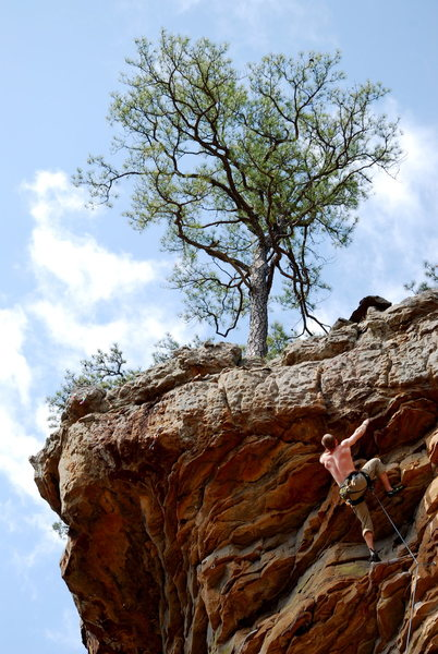 Rock Climbing Photo: Bronocus - Roman Wall HCR, AR