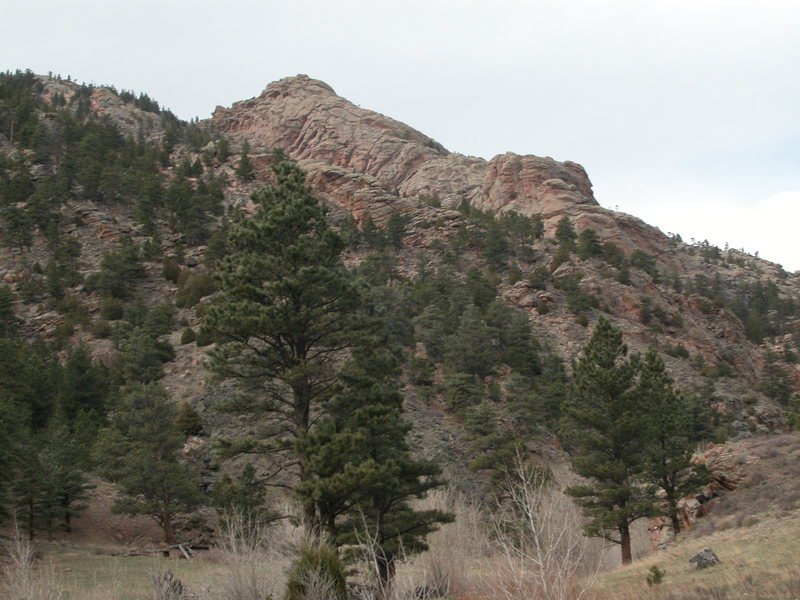 Rock Climbing Photo: NE Flank of Pine Mountain from Ashley Creek