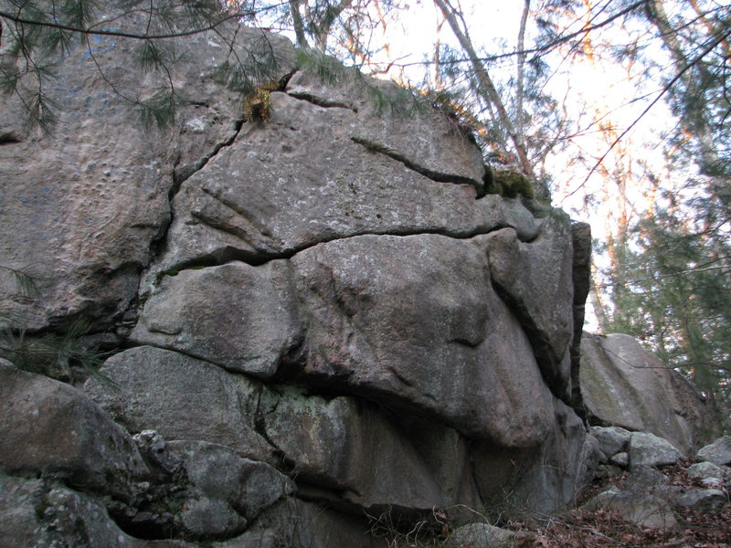 Rock Climbing Photo: It just needs a quick scrub. It is about 15 feet t...
