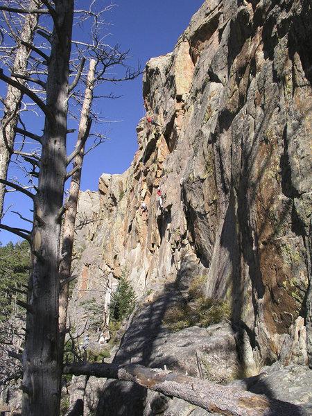 Rock Climbing Photo: Douglas Park Fest