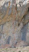Rock Climbing Photo: 'Bibendum' follows steep gymnastic huecos. Fun.