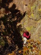 Rock Climbing Photo: Rachael on Calypso