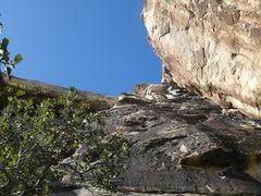 Rock Climbing Photo: TONTO 5.5 TRAD