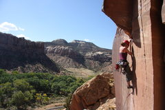 Rock Climbing Photo: Anna B Ward sending