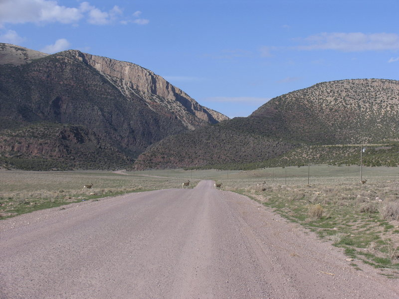 Irish Canyon from Jct CS318 and CO Rd. 10N.