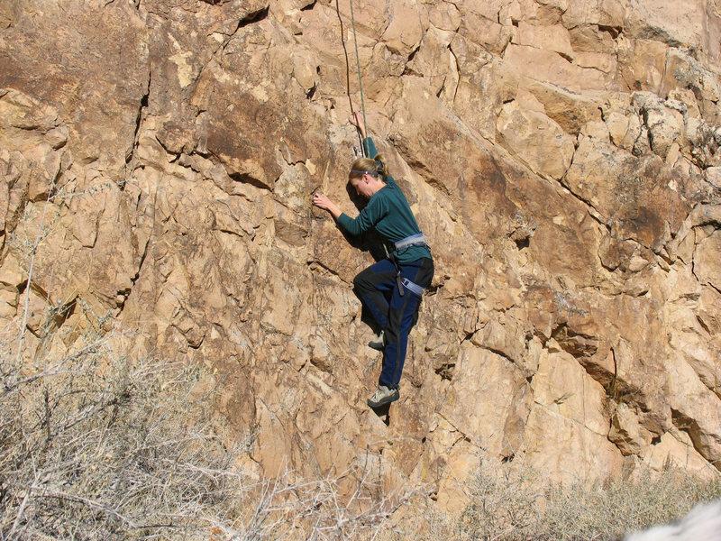 Rock Climbing Photo: Alee pulling hard on the 8.