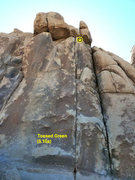 Rock Climbing Photo: Tossed Green (5.10a), Joshua Tree NP