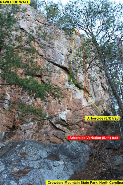 RAWLHIDE WALL<br> <br> Arborcide (5.9) trad<br> Arborcide Variation (5.11) trad<br> <br> Crowders Mountain State Park, North Carolina