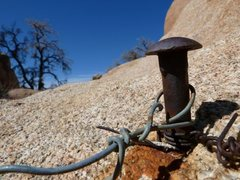 Rock Climbing Photo: Relic from the past at Hound Rock, Joshua Tree NP