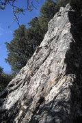 Rock Climbing Photo: Fun finish on a nice pinnacle.