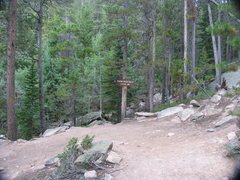 Rock Climbing Photo: The second Switchback and beginning of climber tra...