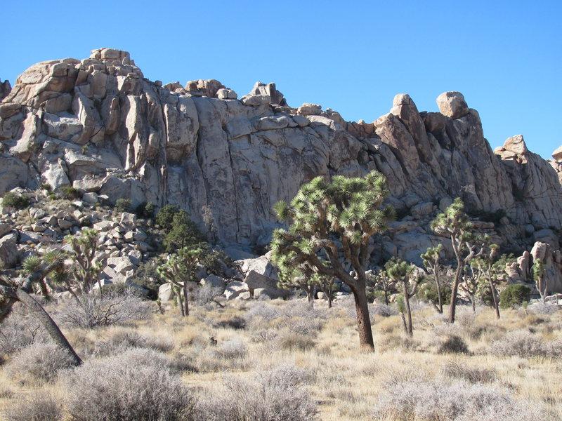 Rock Climbing Photo: hemingway