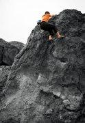 Rock Climbing Photo: Professional Widow.